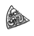 ink sketch pizza vector image