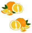 orange fruit set of fresh whole and cut orange vector image vector image