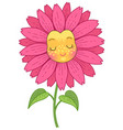 pink flower character vector image vector image