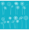 set dandelions vector image vector image