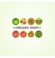 Organic Shop Concept vector image
