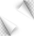 Paper curl vector image