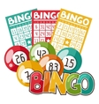 Bingo or lottery game with balls and vector image vector image