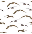 birds gulls seamless vector image