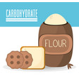 carbohydrate food healthy nutrition image vector image
