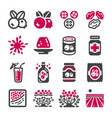 cranberry icon vector image vector image