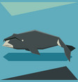 flat design bowhead whale vector image