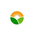 green sun logo icon design vector image vector image