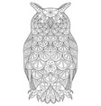 hand drawn owl sitting on branch black and vector image