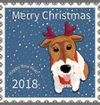 postage stamp with the fox terrier 1 vector image vector image