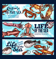 sea life poster of sketch animals and fish vector image vector image