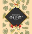 tropical summer frame design background vector image vector image