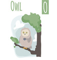 vertical of owl with morning tea sitting on the vector image vector image