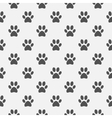 Animal black paw footprint pattern vector image