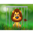 A scary lion inside the cage vector image vector image