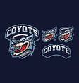 coyote mascot logo design vector image vector image