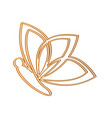 isolated butterfly outline vector image