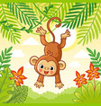 monkey jumping on trees cute animal in a vector image