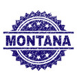 scratched textured montana stamp seal vector image