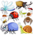 Sticker set of many insects vector image vector image