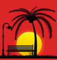 sunset with bench in the park and palm tree vector image