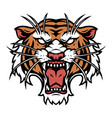 colorful tattoo concept angry tiger head vector image vector image