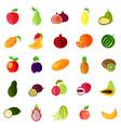 food fruits like apple and pear kiwi and orange vector image