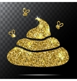 Image of gold glitter shit White background vector image