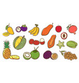 mix tropical fruits collection cute colorful vector image vector image