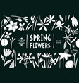 spring flowers design template scandinavian vector image
