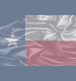 texas silk flag vector image vector image