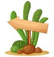 wooden sign in cactus garden vector image