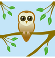 Cute barn owl vector image vector image
