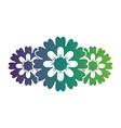 flower petals leaves nature decoration vector image vector image