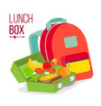 Lunch box and bag healthy school lunch