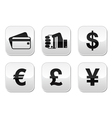 Payment methods buttons set - credit card by cash vector image vector image