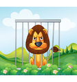 A cage in the hill with a lion vector image vector image