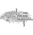 best fat burner text word cloud concept vector image vector image