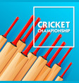 cricket bat on sports background vector image vector image