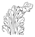 french leaf renaissance is a long leaves pattern vector image vector image