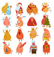 piggies new year cartoon set vector image