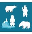 Polar Bears collection Funny cartoon character vector image vector image