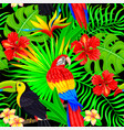 seamless pattern tropical bird leaves and vector image vector image