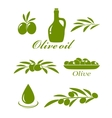 set of olive design elements vector image