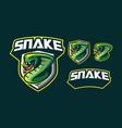 snake mascot logo design vector image vector image