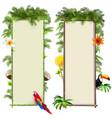 tropics boards set 2 vector image