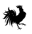 Black and white drawing of a rooster Isolated vector image vector image