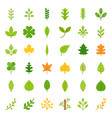 leaves and branch icon set flat design vector image vector image