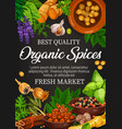 natural food condiment and organic spices vector image vector image