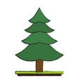 tree pine symbol vector image